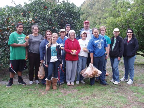 Our Saturday morning gleaning group.